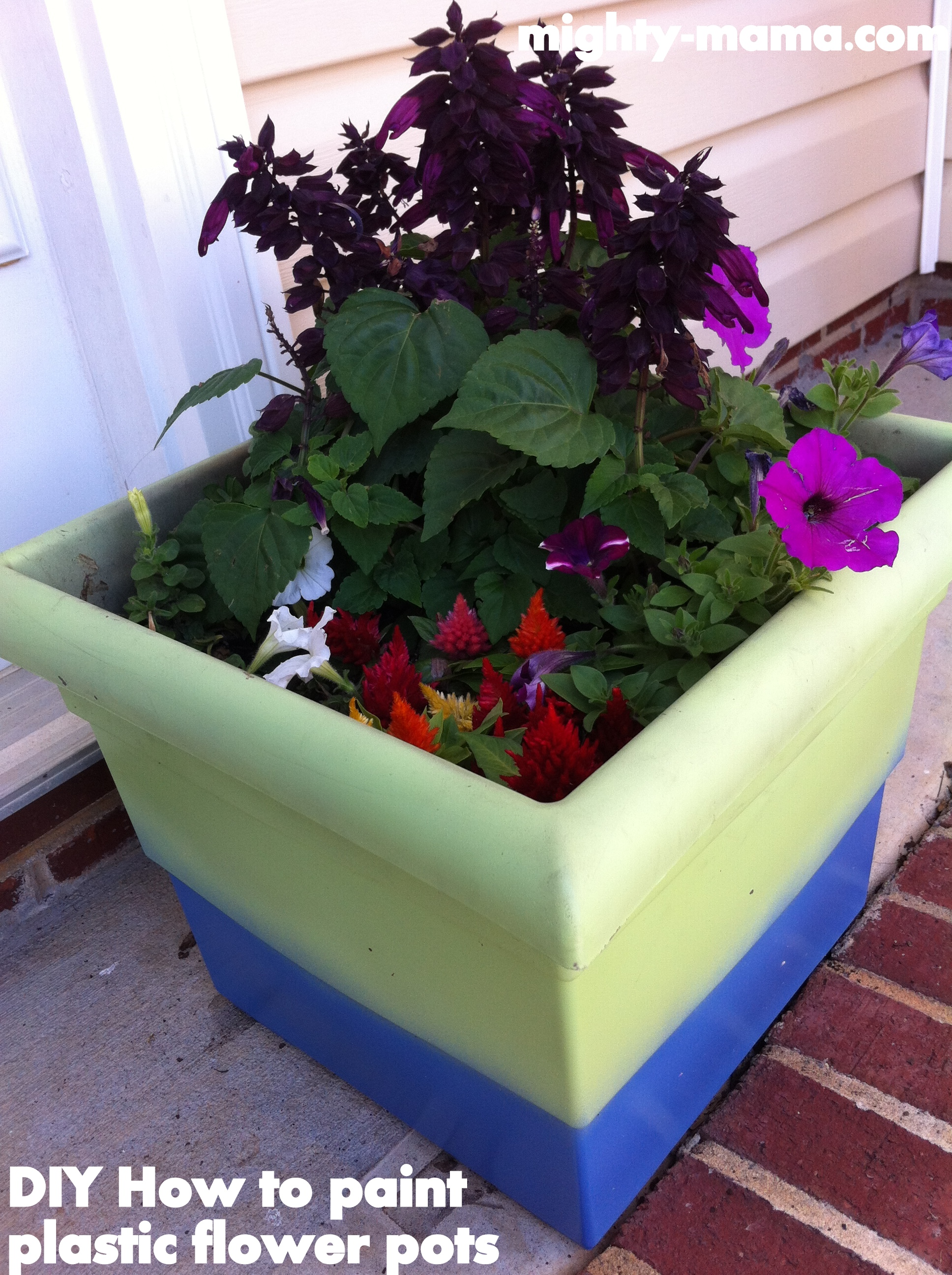 Mighty Mama - WordPress.com : paint for plastic flower pots - startupinsights.org
